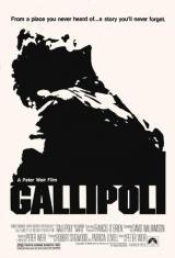 Gallipoli-130808203-main