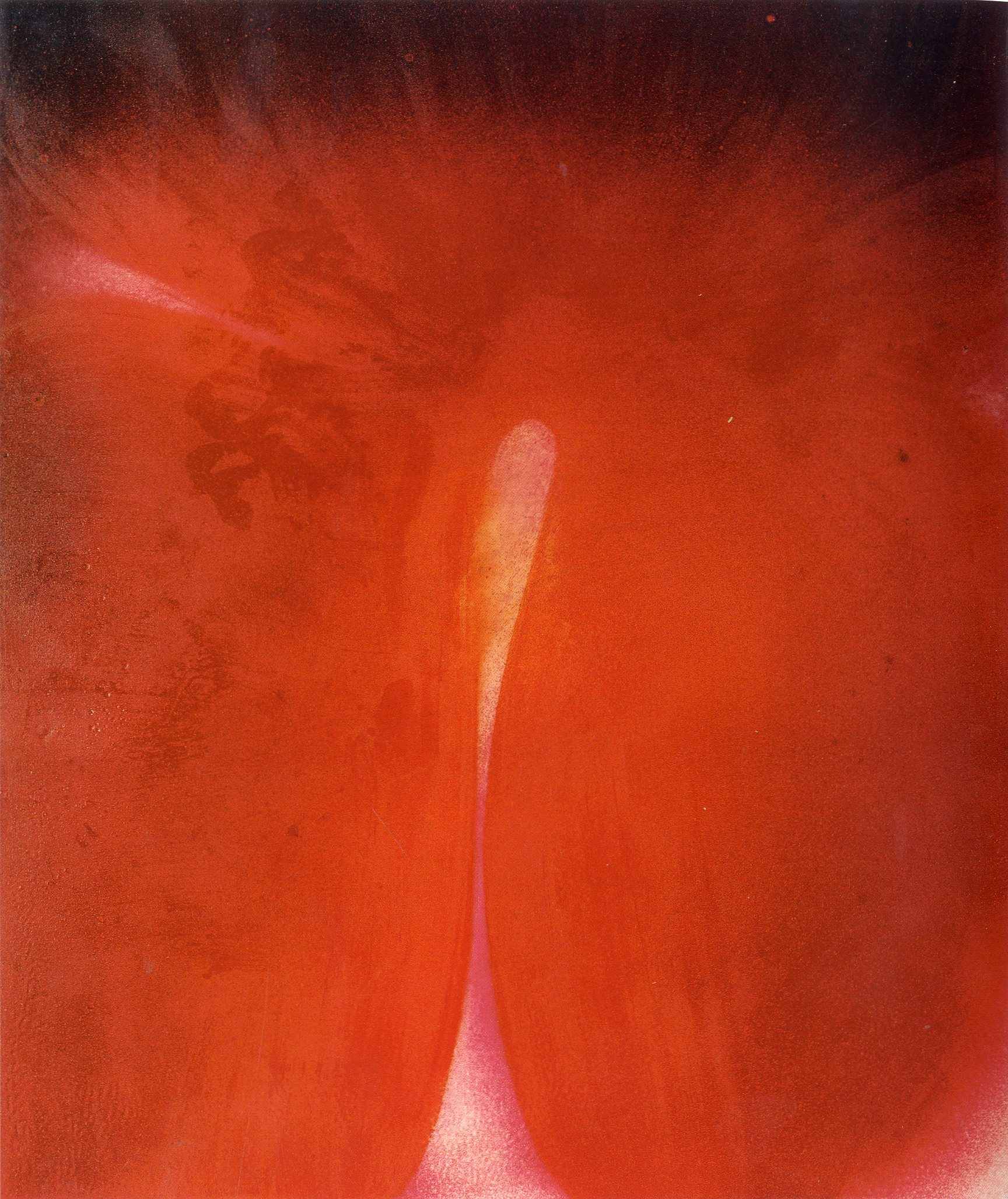 "Serie ""La luz que se apaga"", J.M. Sicilia (2005)"